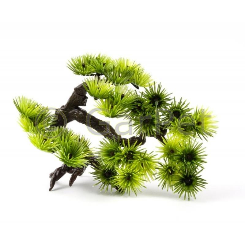 aquarium dekoration bonsai pflanze online bestellen. Black Bedroom Furniture Sets. Home Design Ideas