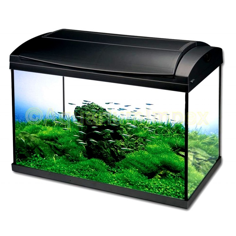nano aquarium hailea komplettset bei garpet. Black Bedroom Furniture Sets. Home Design Ideas