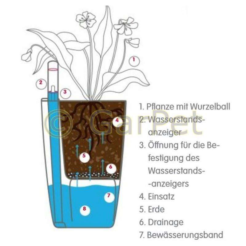 Orchideentopf Blumentopf selbstwässernd durchsichtig
