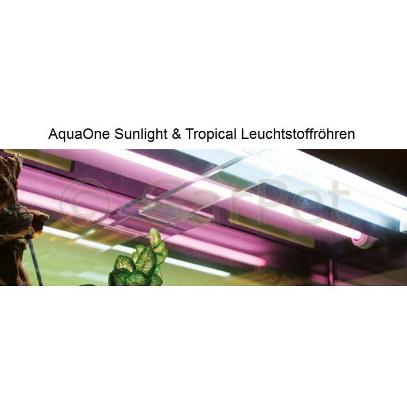 Aquarium Leuchtstoffrohre T8 Zuhause Image Idee